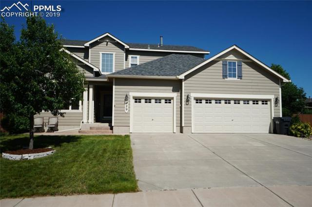229 Avocet Loop, Colorado Springs, CO 80921 (#9189031) :: 8z Real Estate