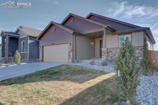 6683 Big George Drive, Colorado Springs, CO 80923 (#9189732) :: Tommy Daly Home Team