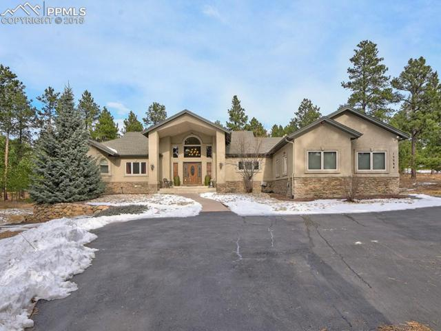 15594 Open Sky Way, Colorado Springs, CO 80908 (#9189954) :: The Hunstiger Team