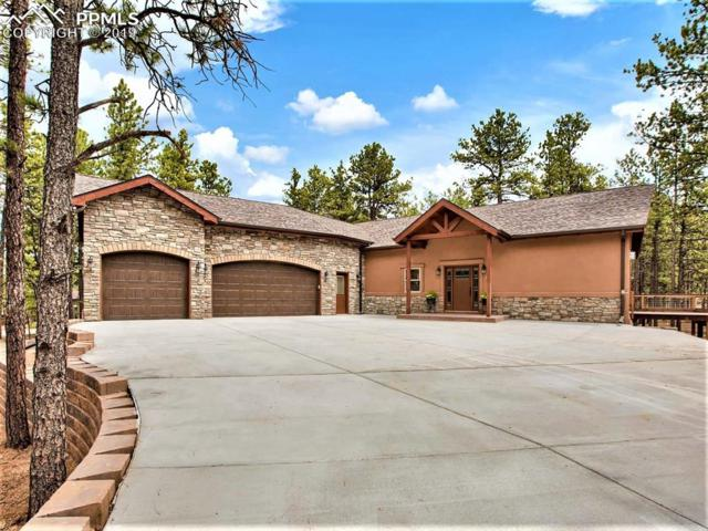 1241 Woodland Valley Ranch Drive, Woodland Park, CO 80863 (#9190681) :: Fisk Team, RE/MAX Properties, Inc.