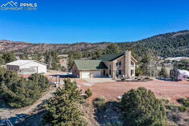 2235 Autumn Creek Drive, Canon City, CO 81212 (#9193582) :: Tommy Daly Home Team