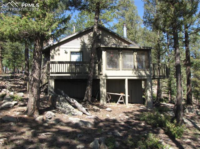177 Bridle Lane, Florissant, CO 80816 (#9193605) :: Jason Daniels & Associates at RE/MAX Millennium