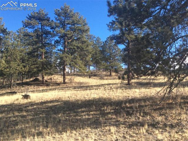 County 77 Road, Lake George, CO 80827 (#9205743) :: 8z Real Estate