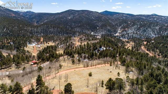 304 Calcite Drive, Divide, CO 80814 (#9209018) :: The Daniels Team