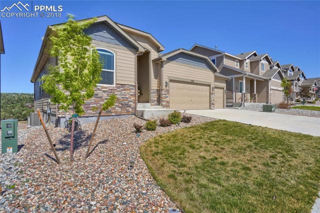 828 Gold Canyon Road, Monument, CO 80132 (#9210640) :: Fisk Team, RE/MAX Properties, Inc.