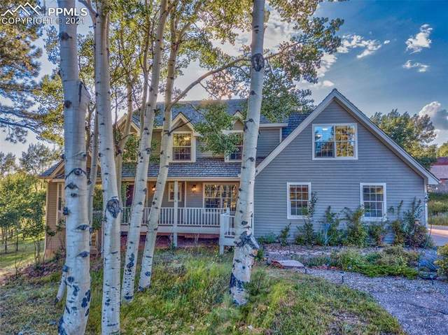 149 Joshua Road, Divide, CO 80814 (#9211833) :: Action Team Realty
