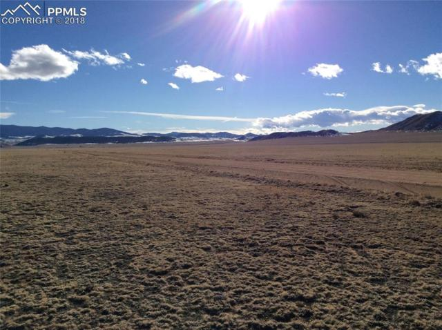 High Chaparral Road, Lake George, CO 80827 (#9219006) :: 8z Real Estate