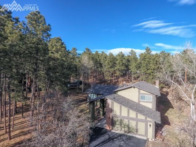 1320 Tari Drive, Colorado Springs, CO 80921 (#9219185) :: Action Team Realty