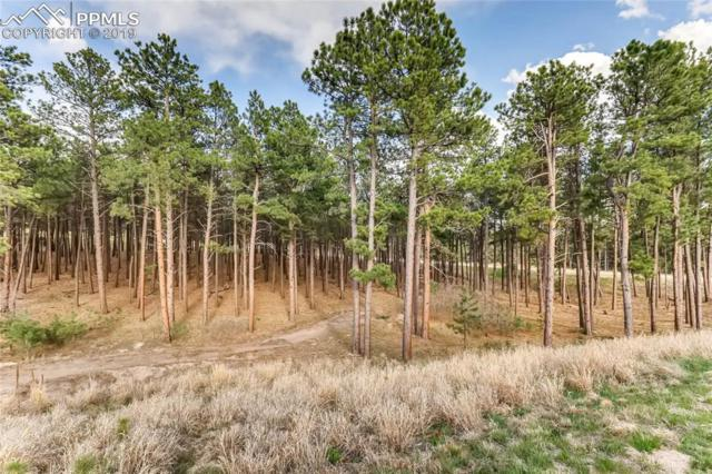 17450 Minglewood Trail, Monument, CO 80132 (#9220014) :: 8z Real Estate