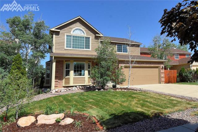 2620 Clapton Drive, Colorado Springs, CO 80920 (#9220914) :: Fisk Team, RE/MAX Properties, Inc.