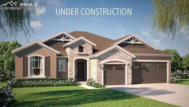 10540 Wrangell Drive, Colorado Springs, CO 80924 (#9220991) :: 8z Real Estate
