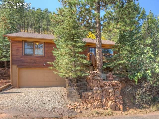 9905 Mountain Road, Cascade, CO 80809 (#9221927) :: The Treasure Davis Team