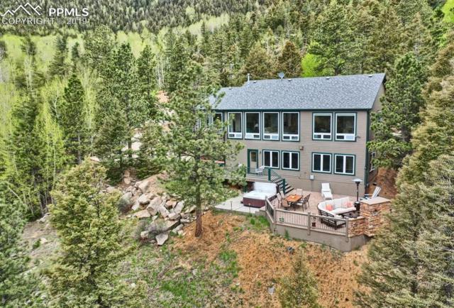 6270 Waterfall Loop, Manitou Springs, CO 80829 (#9224565) :: 8z Real Estate