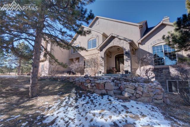 19035 Purser Court, Monument, CO 80132 (#9226602) :: Jason Daniels & Associates at RE/MAX Millennium
