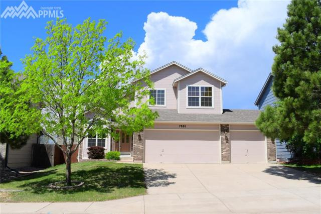 7880 Interlaken Drive, Colorado Springs, CO 80920 (#9229575) :: The Treasure Davis Team