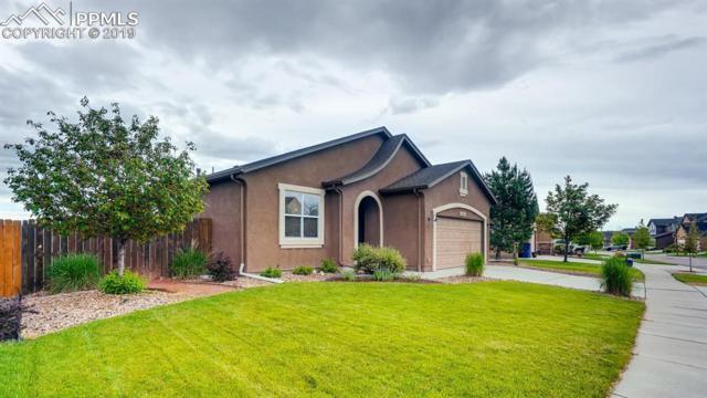6118 Cumbre Vista Way, Colorado Springs, CO 80924 (#9234057) :: Tommy Daly Home Team