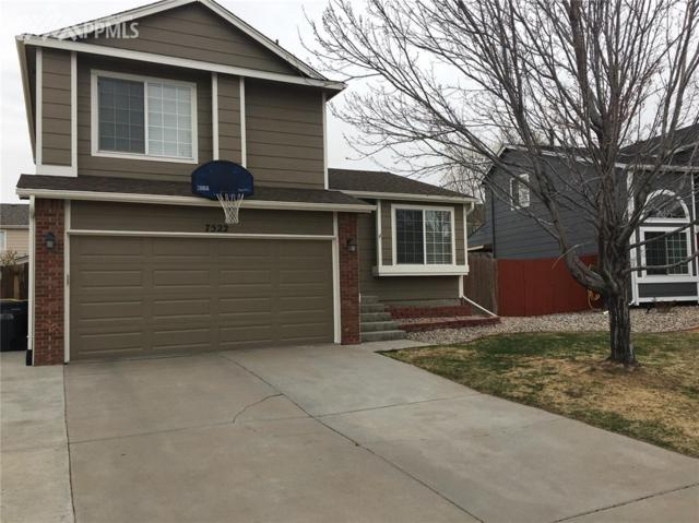 7522 Old Spec Road, Peyton, CO 80831 (#9235483) :: The Treasure Davis Team