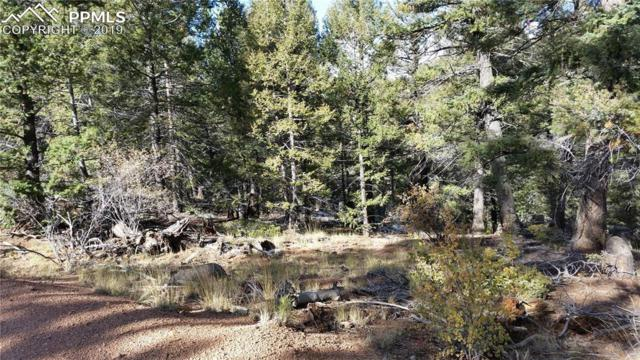 3520 N Mountain Estates Road, Florissant, CO 80816 (#9235847) :: Colorado Home Finder Realty
