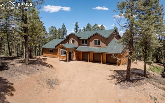 77 Denwood Drive, Florissant, CO 80816 (#9238868) :: HomePopper