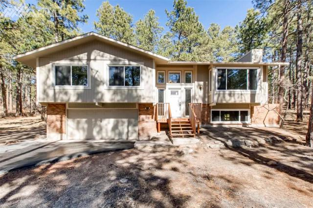 19875 Hidden Springs, Monument, CO 80132 (#9245119) :: CENTURY 21 Curbow Realty