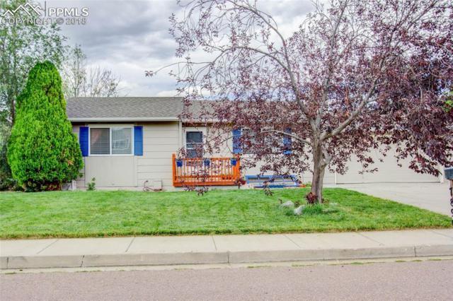 7890 Woody Creek Drive, Colorado Springs, CO 80911 (#9246974) :: 8z Real Estate