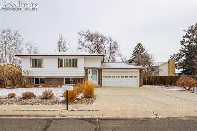 3874 Fetlock Circle, Colorado Springs, CO 80918 (#9247581) :: Realty ONE Group Five Star