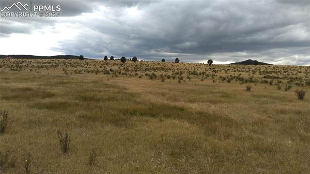 11881 S Highway 67 Highway, Cripple Creek, CO 80813 (#9247868) :: Action Team Realty