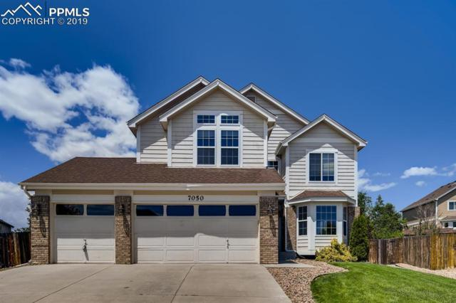 7050 Stallion Way, Colorado Springs, CO 80922 (#9250064) :: Tommy Daly Home Team