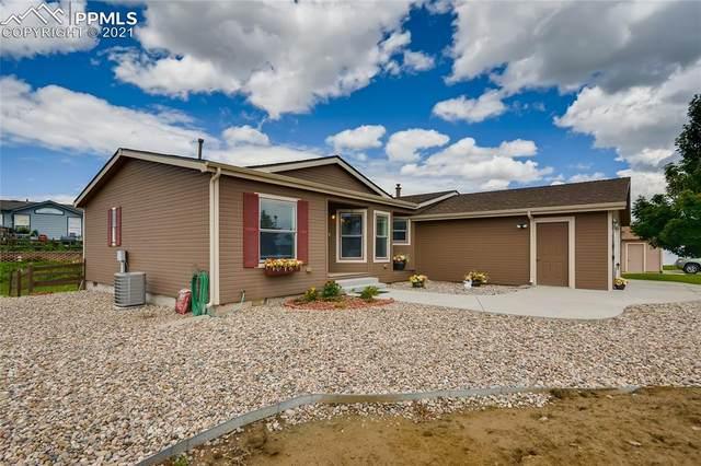 7791 Grizzly Bear Point, Colorado Springs, CO 80922 (#9254875) :: Venterra Real Estate LLC