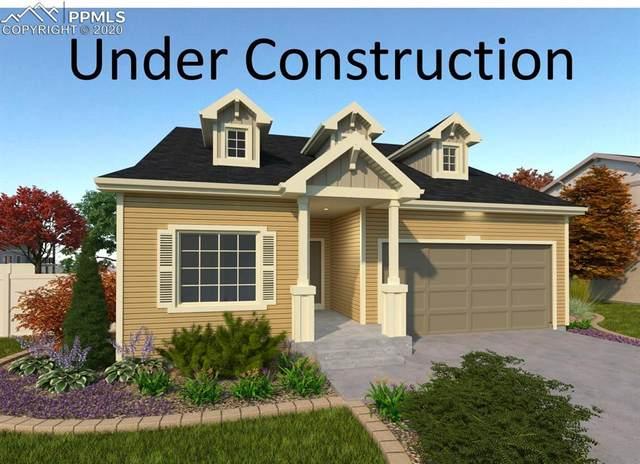 9286 Birr Court, Colorado Springs, CO 80927 (#9256056) :: 8z Real Estate