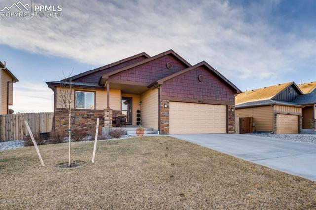 10437 Declaration Drive, Colorado Springs, CO 80925 (#9260212) :: The Hunstiger Team
