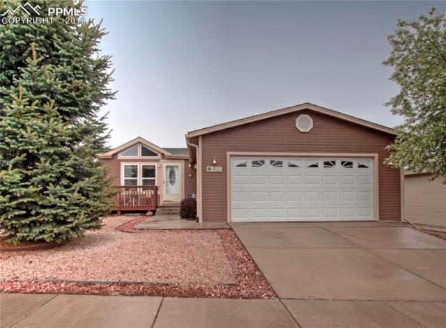 4132 Gray Fox Heights, Colorado Springs, CO 80922 (#9260608) :: The Daniels Team