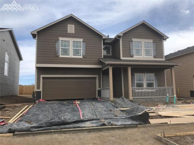 7438 Cat Tail Creek, Colorado Springs, CO 80923 (#9265485) :: Action Team Realty