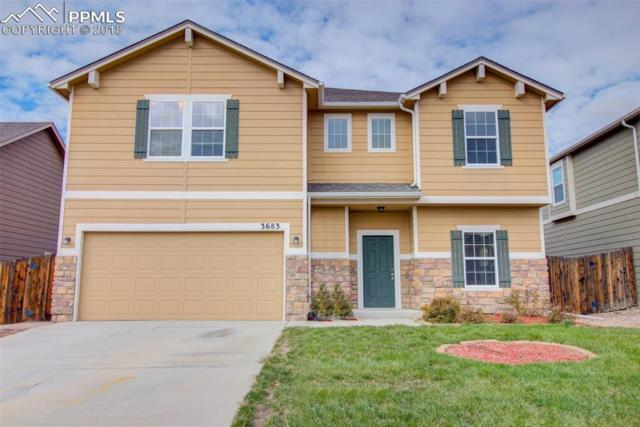 3683 Winter Sun Drive, Colorado Springs, CO 80925 (#9265758) :: Fisk Team, RE/MAX Properties, Inc.