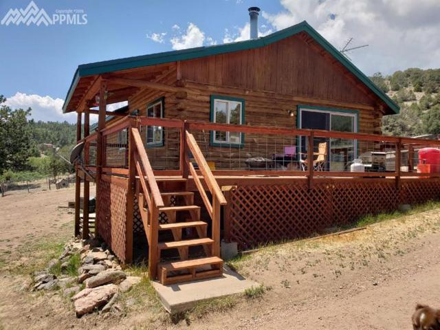 4737 High Park Road, Florissant, CO 80816 (#9266906) :: The Treasure Davis Team