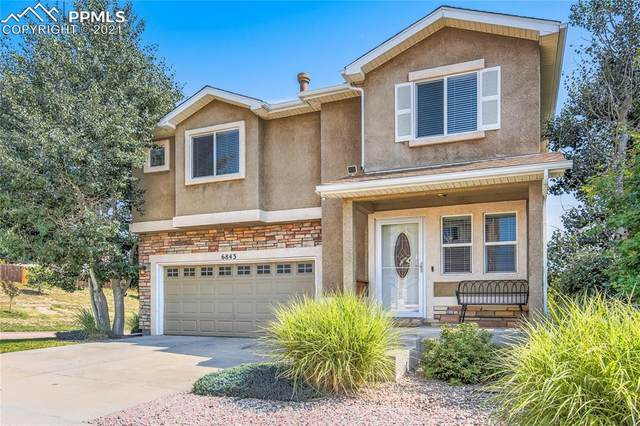 6843 Harrier Drive, Colorado Springs, CO 80922 (#9271354) :: Tommy Daly Home Team