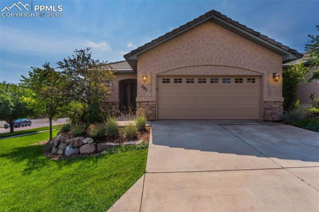 587 Minuet Point, Colorado Springs, CO 80906 (#9272023) :: Action Team Realty