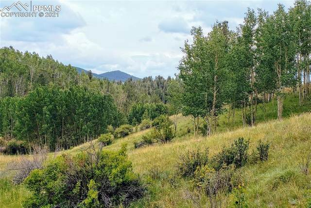 1864 Golden Cycle Circle, Cripple Creek, CO 80813 (#9273530) :: Action Team Realty