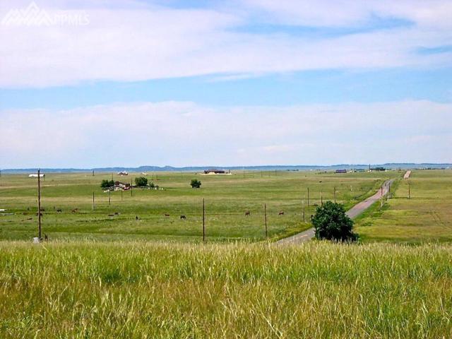 19925 Joyful View, Peyton, CO 80831 (#9274425) :: 8z Real Estate