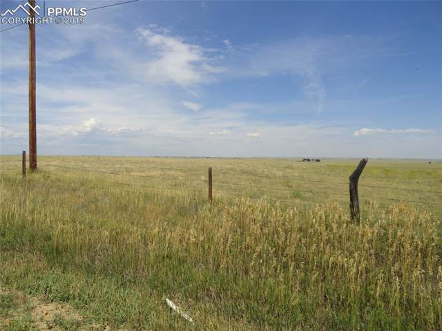 Torrence Road, Yoder, CO 80864 (#9274431) :: The Daniels Team