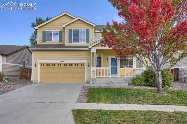 7236 Eagle Canyon Drive, Colorado Springs, CO 80922 (#9280068) :: Tommy Daly Home Team