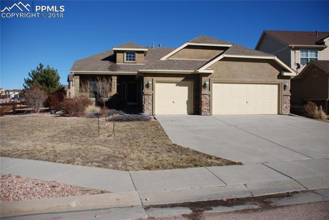 10273 Capital Peak Way, Peyton, CO 80831 (#9290904) :: Venterra Real Estate LLC