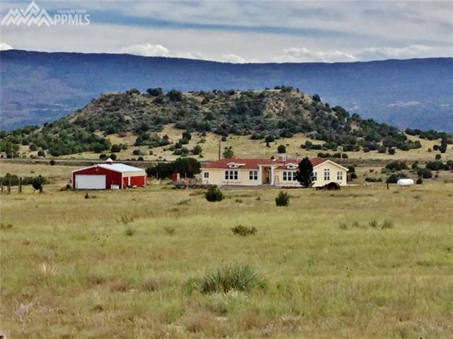 48650 County 22 Road, Trinchera, CO 81081 (#9292703) :: Jason Daniels & Associates at RE/MAX Millennium