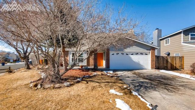 3510 Sydney Terrace, Colorado Springs, CO 80920 (#9294089) :: 8z Real Estate