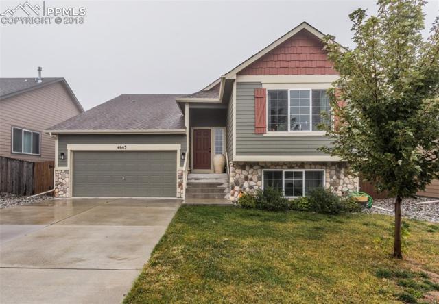 4643 Katahdin Way, Colorado Springs, CO 80911 (#9294703) :: Fisk Team, RE/MAX Properties, Inc.
