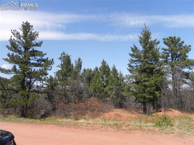 6447 Thunderbird Road, Larkspur, CO 80118 (#9295016) :: 8z Real Estate