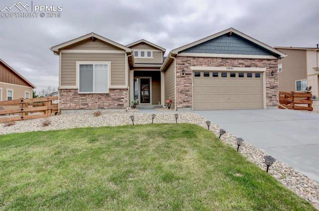 17451 Leisure Lake Drive, Monument, CO 80132 (#9296660) :: CC Signature Group