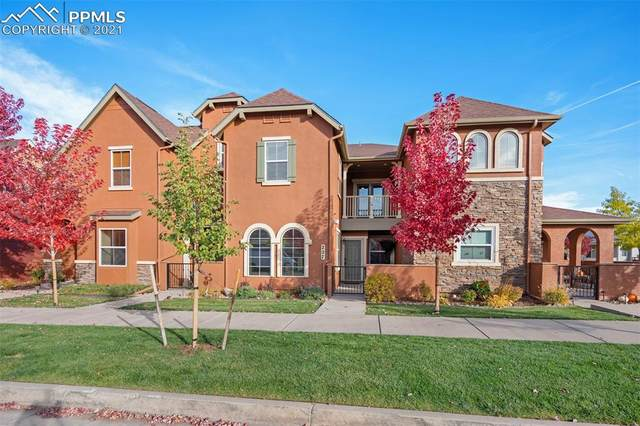 227 S Raven Mine Drive, Colorado Springs, CO 80905 (#9297704) :: Tommy Daly Home Team