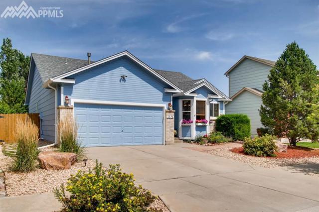 4326 Morning Glory Road, Colorado Springs, CO 80920 (#9303121) :: 8z Real Estate