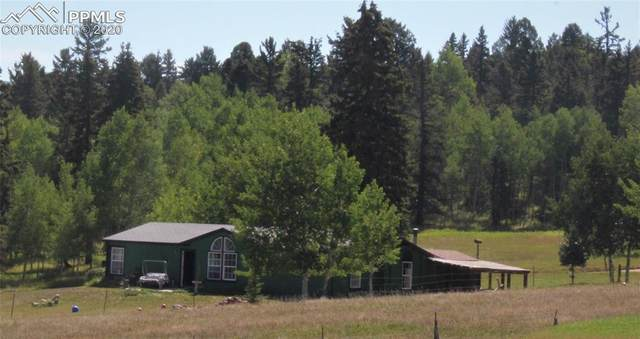 244 Will Scarlet Drive, Divide, CO 80814 (#9305607) :: The Scott Futa Home Team